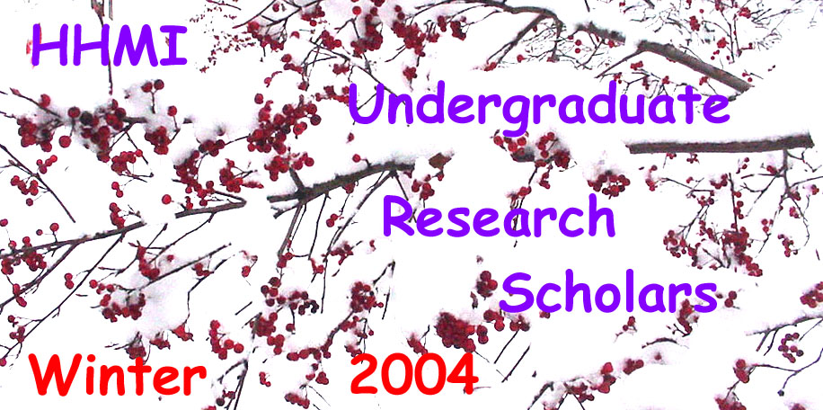 HHMI Undergraduate Research Scholars - Winter 2004