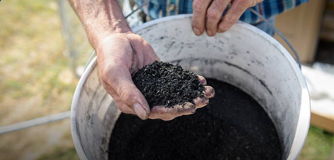 Biochar to the rescue