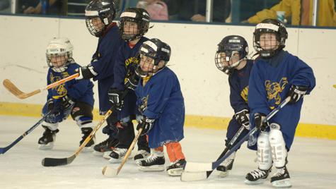 Hockey - Fraser Hockeyland
