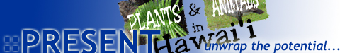 PRESENT site banner