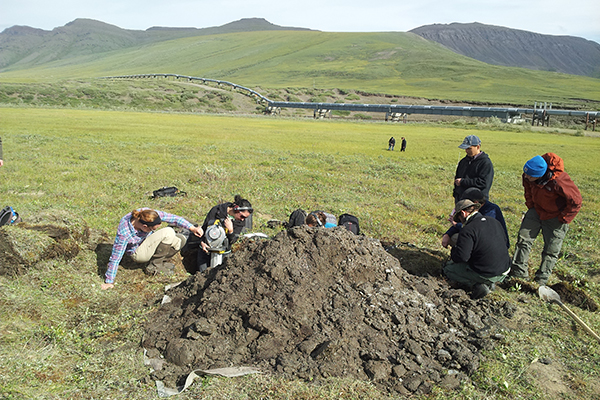 UD professor studies how Arctic soils are affected by precipitation ...