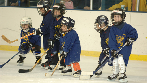 Learn to Play Hockey - Daniel L. Ritchie Center for Sports ...